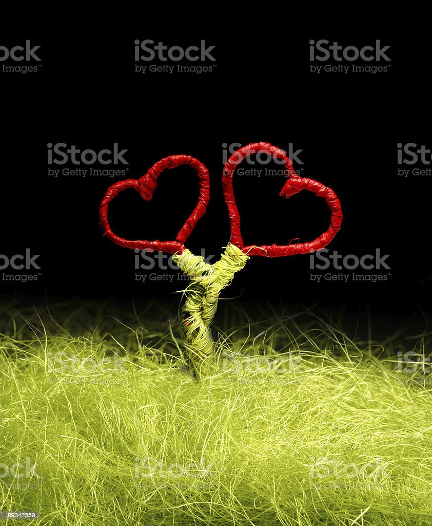 two loving hearts on black background royalty-free stock photo