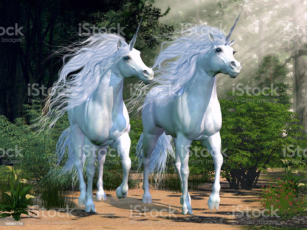 Two majestic unicorns in an enchanted forest  stock photo