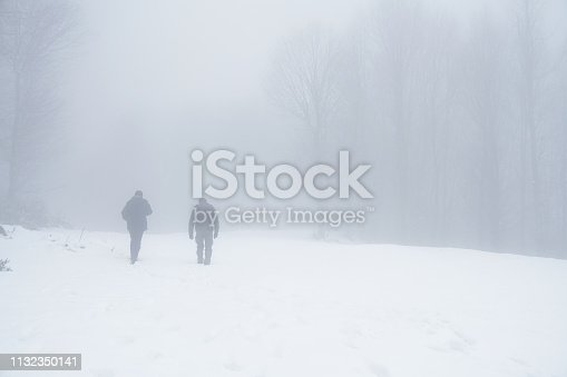 Two Man Walking outdoors in tree winter landscape