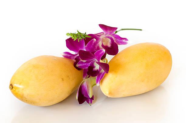 Two mango stock photo