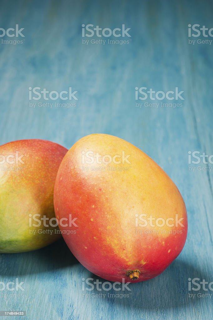 Two Mangoes on a Turquoise Background royalty-free stock photo