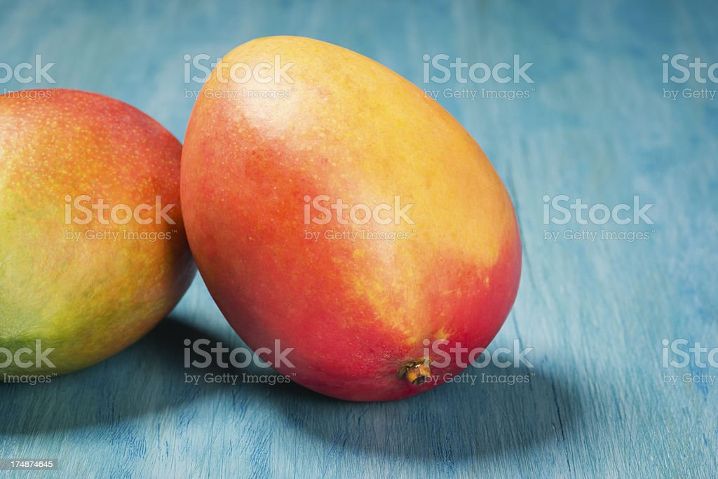 Two Mangoes on a Turquoise Background stock photo