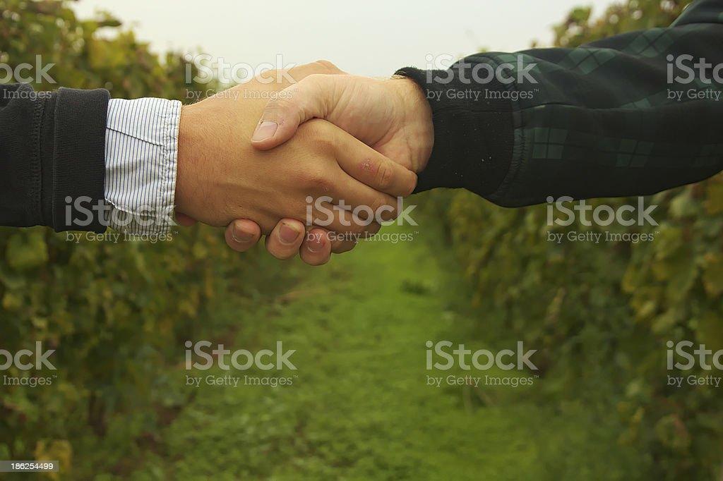 Two mans handshake. royalty-free stock photo