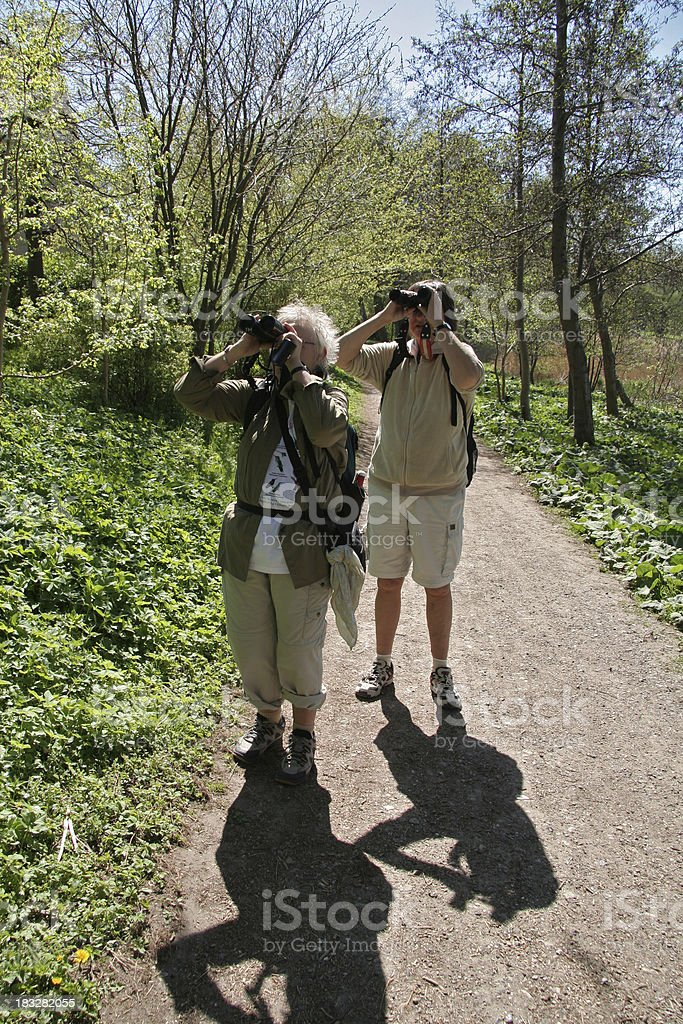 Two mature women are watching birds in spring royalty-free stock photo