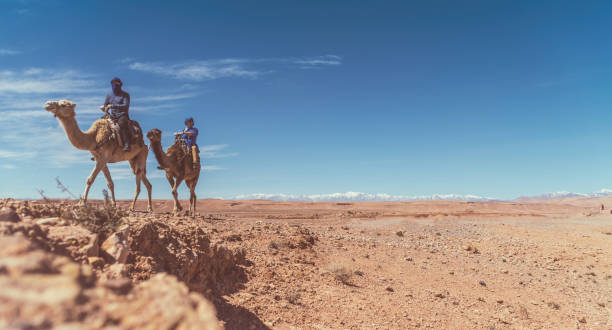 Two men in traditional Berber blue turbans ride camels in Morocco, Africa stock photo