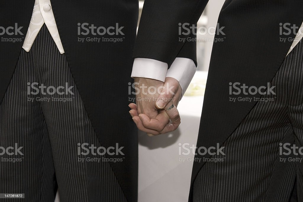 Two men in tuxedos holding hands stock photo