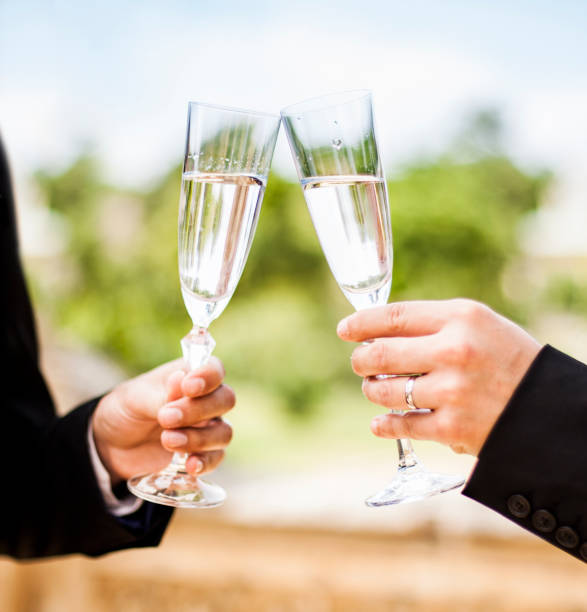 Two men making a toast stock photo