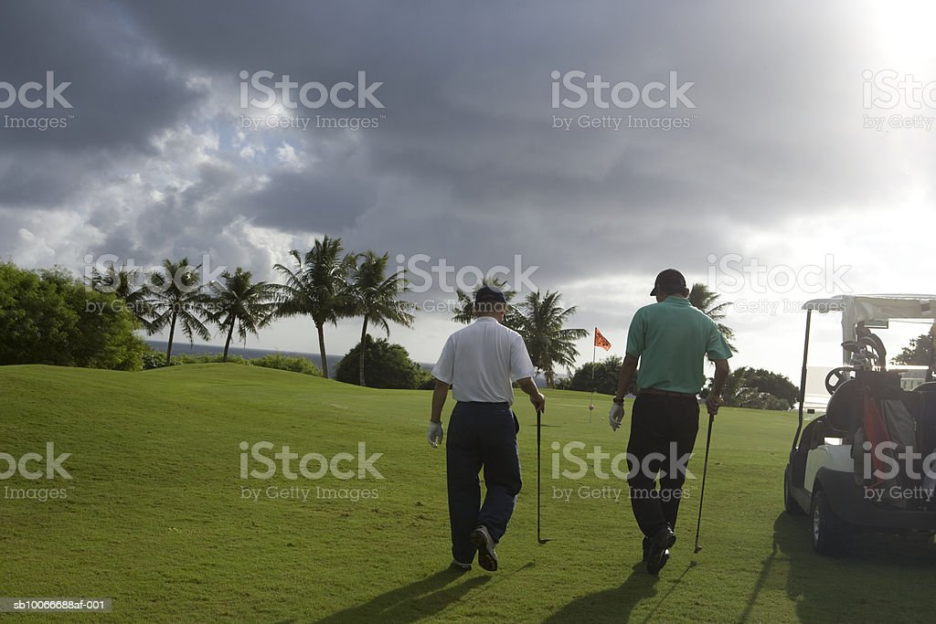 Two men on golf course walking, rear view royalty-free stock photo