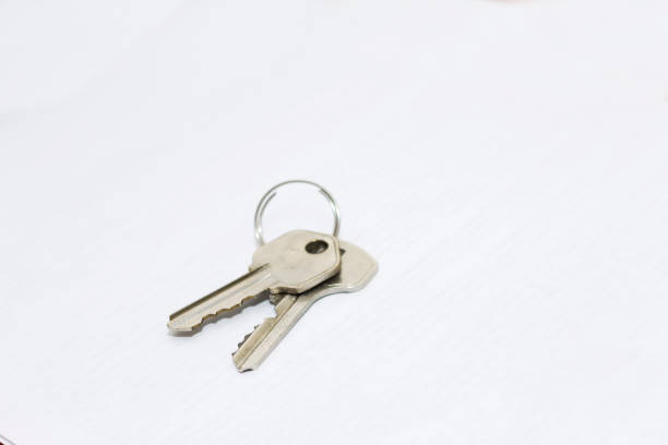 Beyaz arka planda izole halkalı iki metal düz anahtar stok fotoğrafı