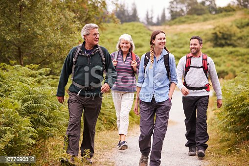 istock Two mixed age couples walking on a countryside path during family camping adventure, front view 1077690312