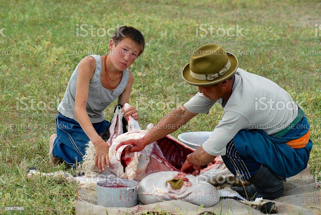 Two Mongolians cut mutton meat, Harhorin, Mongolia. stock photo