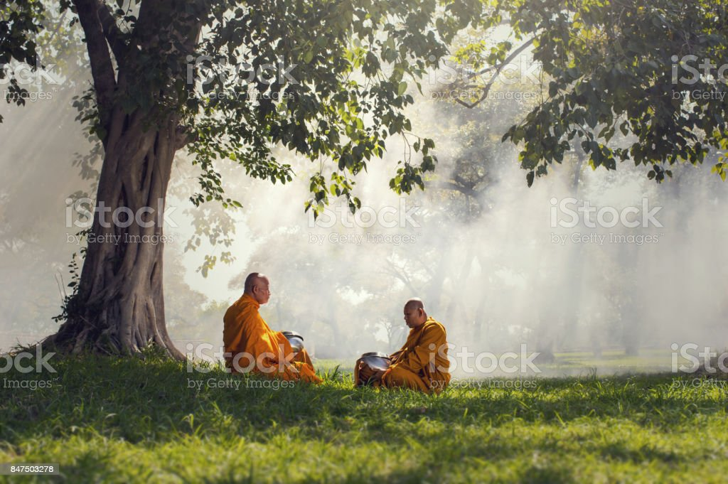Two monks meditation under the trees with sun ray, Buddha religion concept stock photo