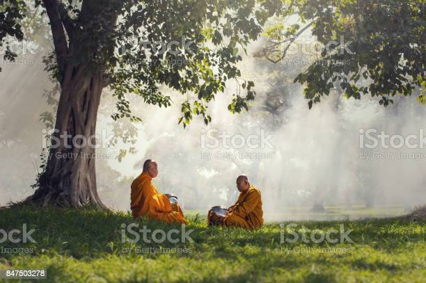 Two monks meditation under the trees with sun ray, Buddha religion concept