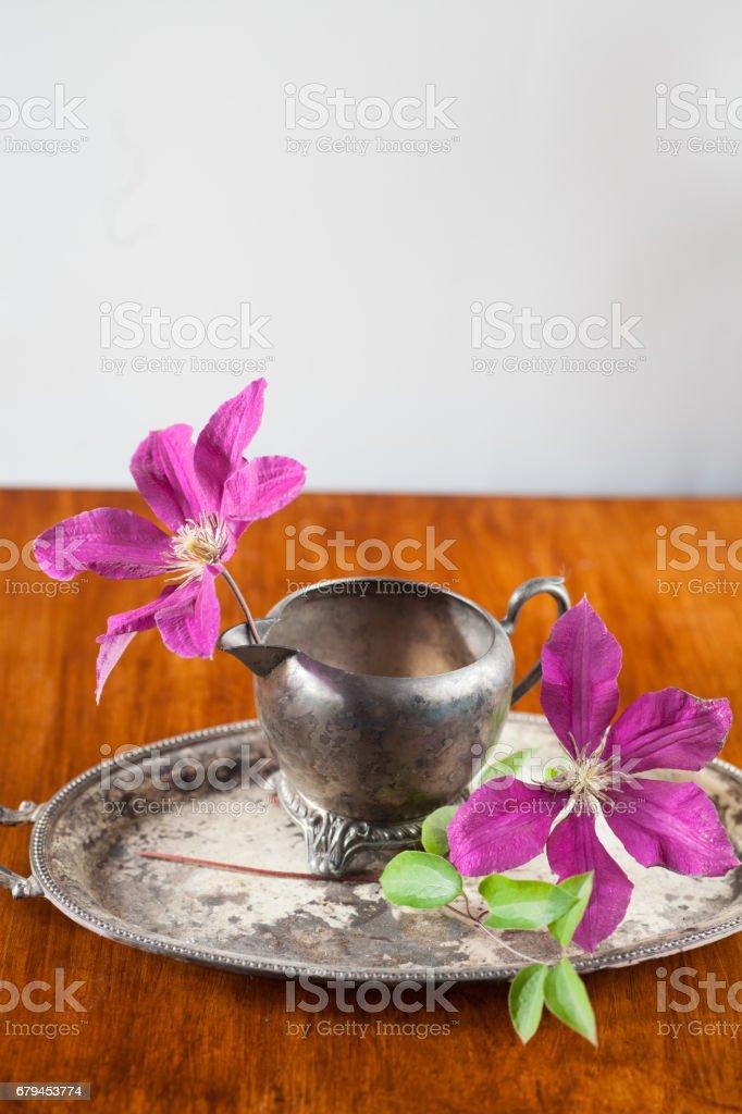 two morning glory flower buds sit in vintage metal sugar bowl royalty-free stock photo