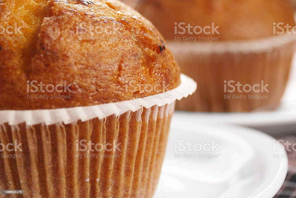 Two muffins royalty-free stock photo