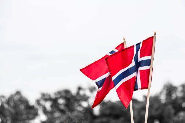 zwei norwegische flaggen im wind im freien - norwegen fahne stock-fotos und bilder