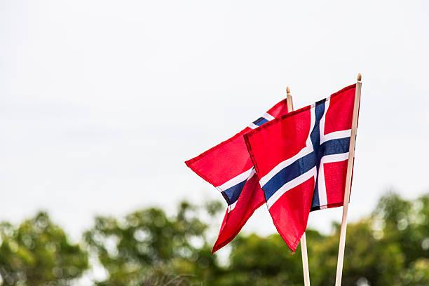 two norwegian flags blowing in the wind - sembolizm akımı stok fotoğraflar ve resimler