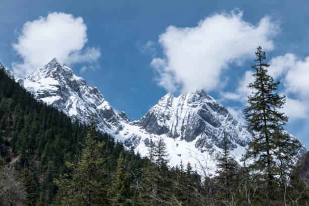 i̇ki gelen dört kız içinde changping vadisi, siguniangshan milli parkı, sichuan eyaleti, çin - ganzi tibet özerk bölgesi stok fotoğraflar ve resimler