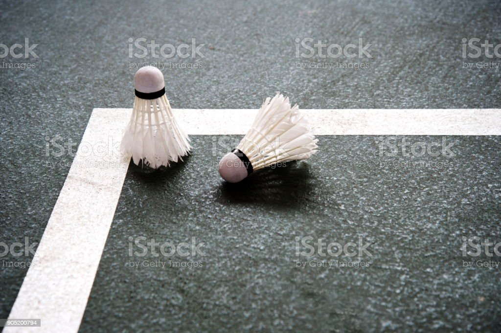two of white shuttlecock badminton on the dark green floor of sport gymnasium background stock photo