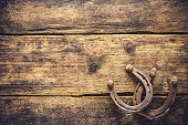 Two old rusty horseshoes