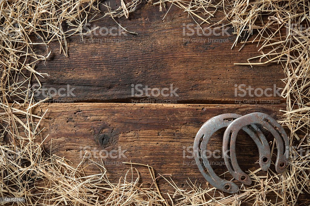 Two old rusty horseshoes with hay stock photo