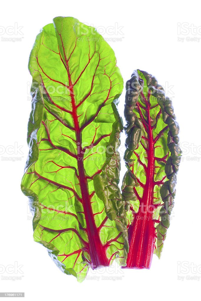 Two Organic Red Spinach Leaves stock photo