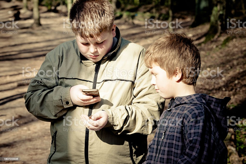 two overweight boys in the forest with a little frog royalty-free stock photo