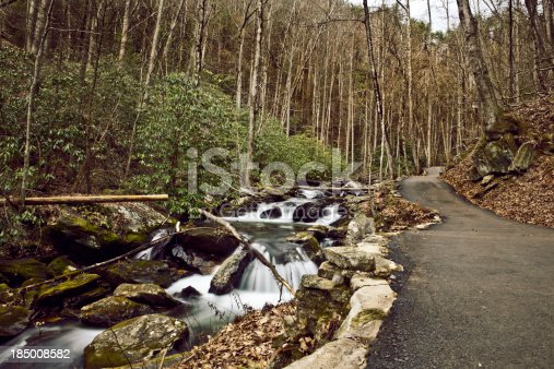 A river flowing along side a paved trail in the forest.