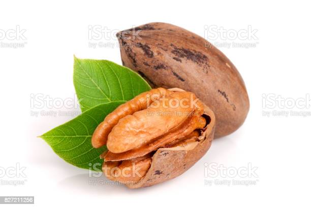 Two pecans with leaves isolated on white background picture id827211256?b=1&k=6&m=827211256&s=612x612&h=crhd2zrguytw7trftuiz58fkqmonbljvskafl6bdlsa=