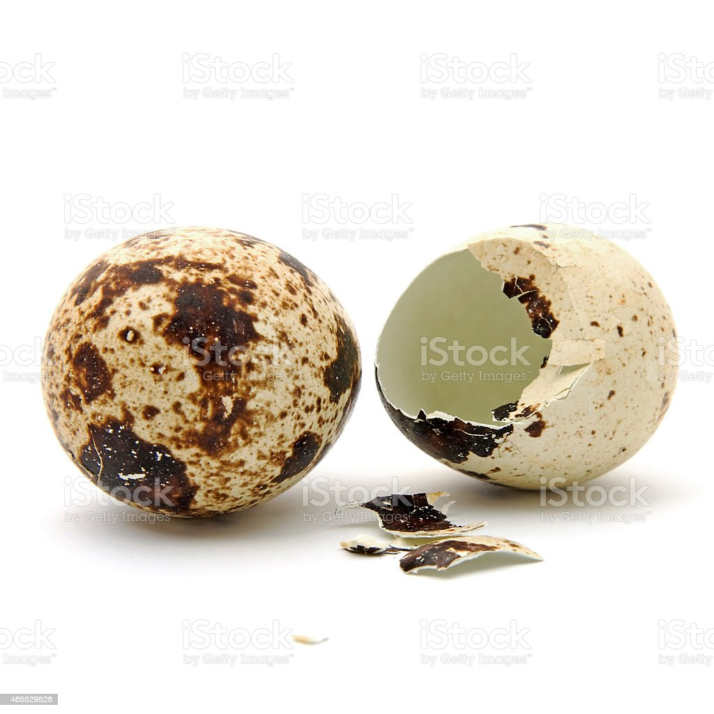 Two Peewit eggs over white background stock photo