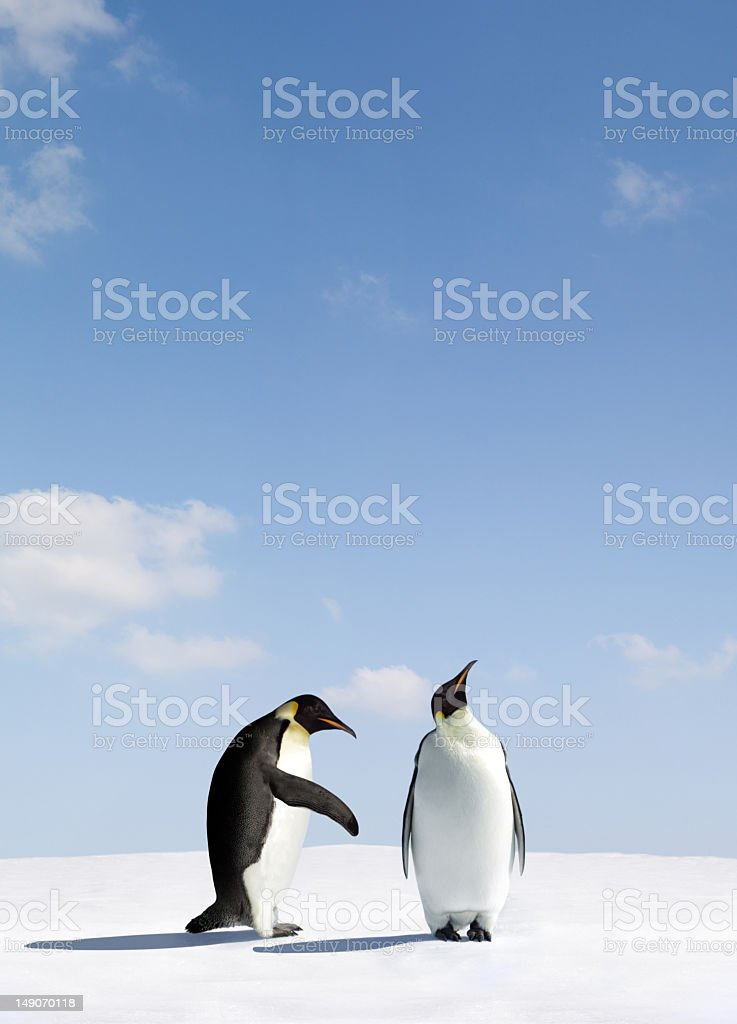 Two penguins depicting rejection royalty-free stock photo
