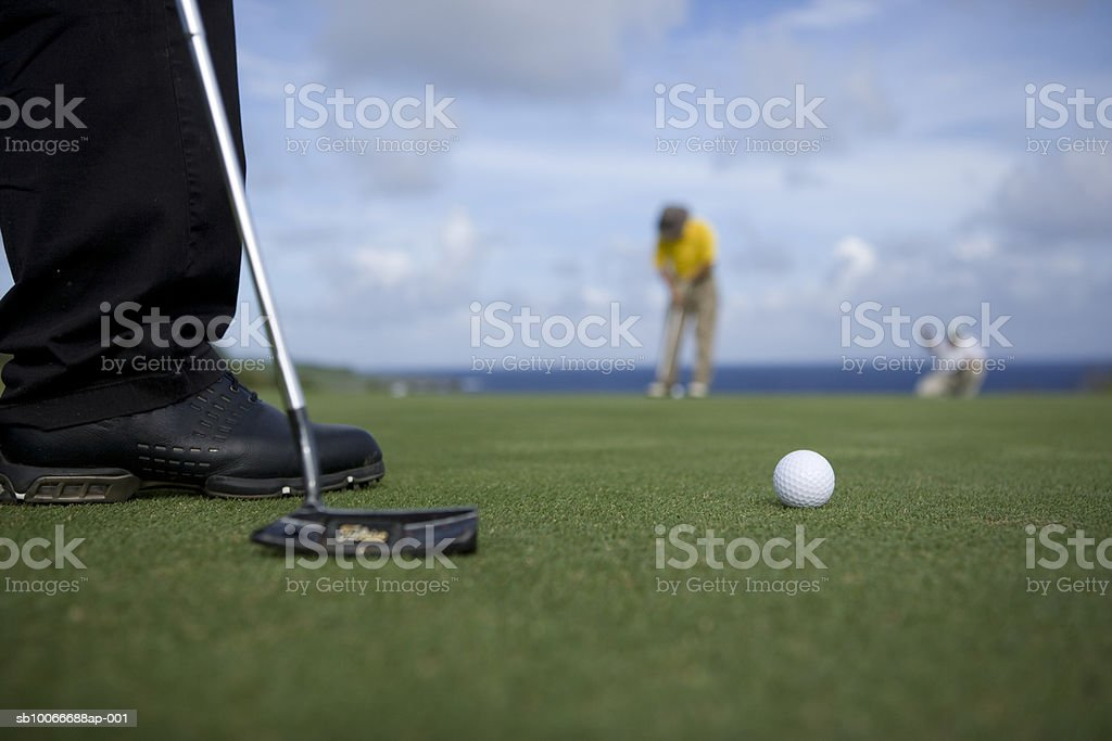 Two people on golf course putting, low section (differential focus) royalty-free stock photo