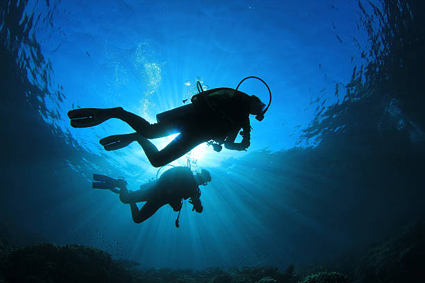 Two people scuba diving with sunlight from above Two scuba divers silhouetted against the sun while they explore a coral reef underwater diving stock pictures, royalty-free photos & images