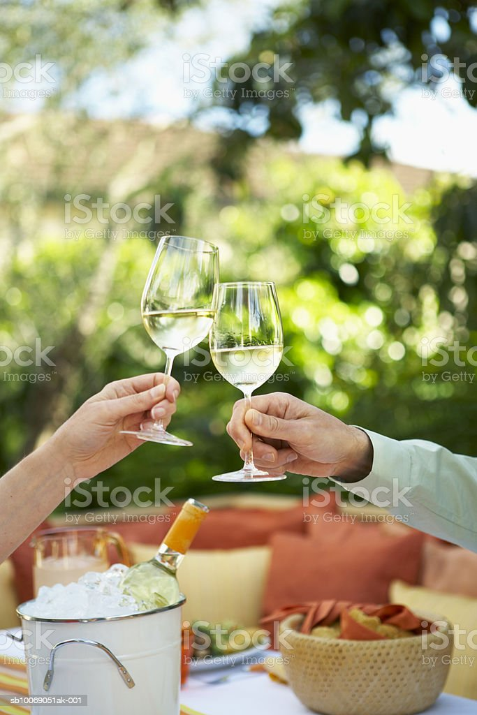 Two people toasting with white wine royalty-free 스톡 사진