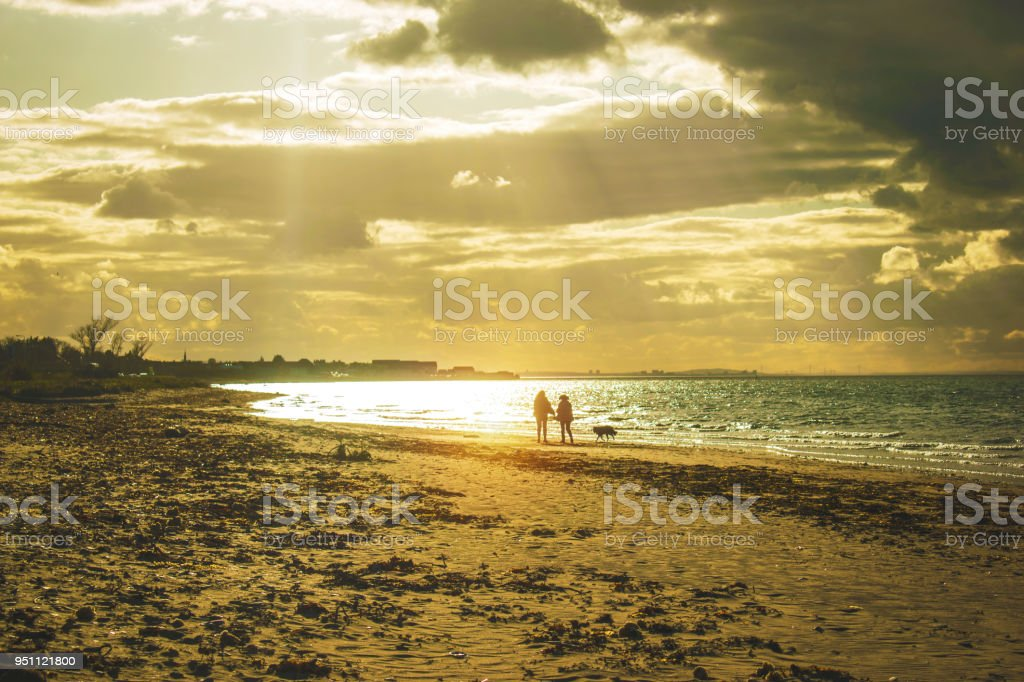 Two people walking their dog on the beach sand at sunset travel concept beach stock photo