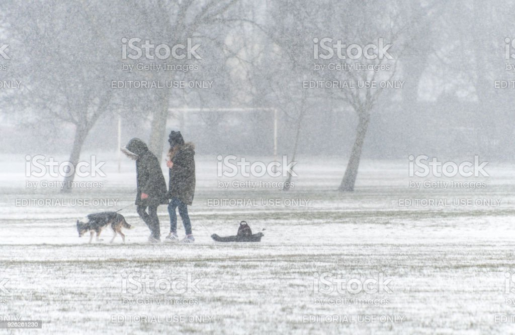 Two people walking with a dog and a sledge in heavy snow stock photo