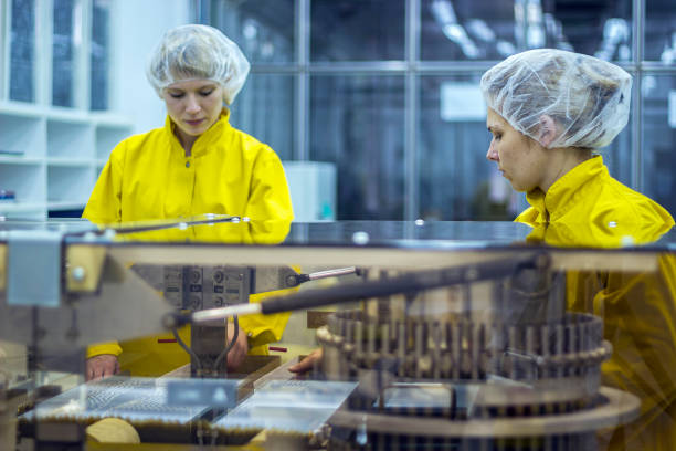 Two Pharmaceutical Factory Workers Wearing Protective Work Wear stock photo