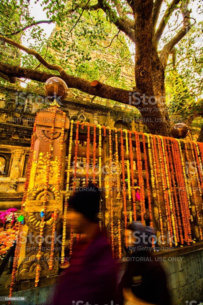 Dos peregrinos pase alrededor del templo de Mahabodhi en Bodh Gaya, India, el árbol de Bodhi decorado con guirnaldas de flores coloridas - foto de stock