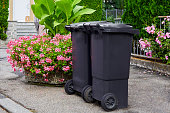 Two plastic garbage cans stand on clean asphalt against the background of flowering bushes on a sunny day. Symbol for garbage recycling, city cleanliness