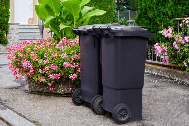 Zwei Plastikmülltonnen stehen an einem sonnigen Tag auf sauberem Asphalt vor dem Hintergrund blühender Büsche. Das Konzept des Müllrecyclings, der Sauberkeit der Stadt – Foto