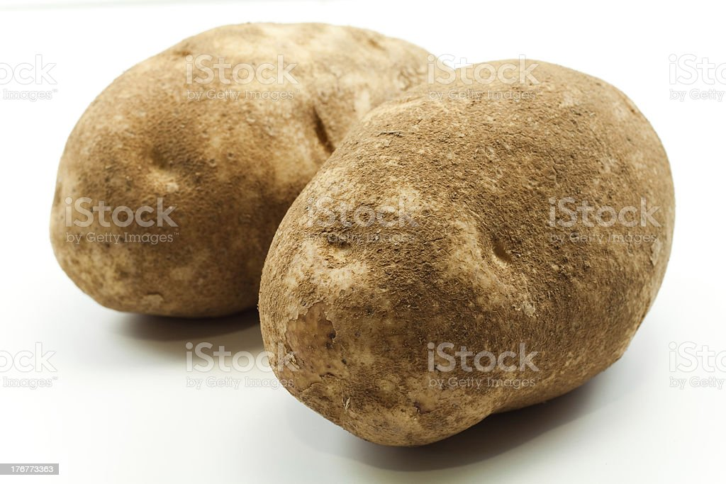 Two potatoes royalty-free stock photo