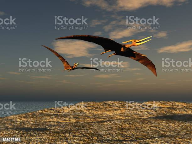 Two pteranodons picture id838917164?b=1&k=6&m=838917164&s=612x612&h=pb5ozvukgf5z8oqv4ilkoausxfzm7l k0woevdunxca=