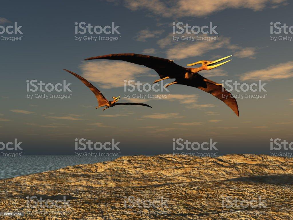 Zwei pteranodons – Foto