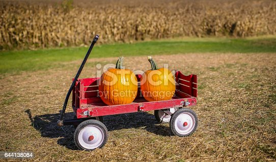 Two pumpkins on a red wagon near a corn field in autumn.