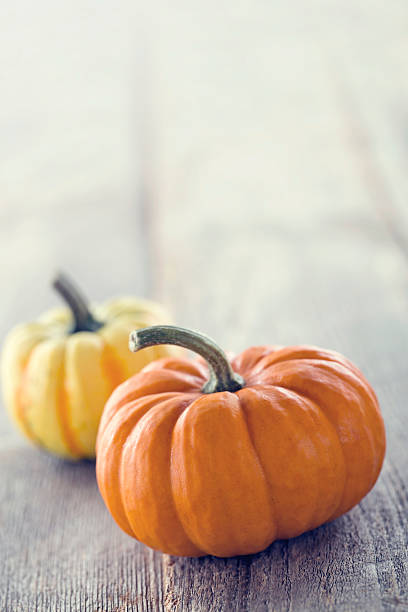 Two pumpkins on a rustic wooden background stock photo
