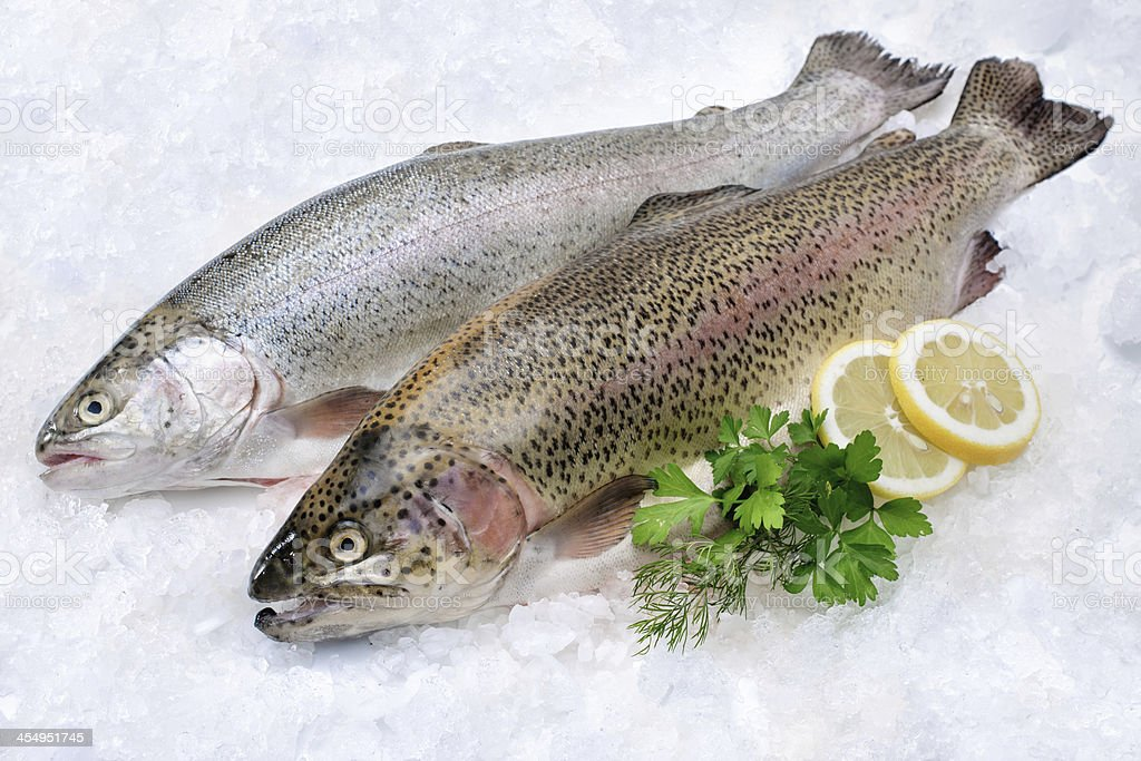 Two Rainbow Trout fish on ice with lemon and garnish stock photo