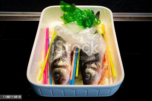 496065234istockphoto two raw seabass in the concept of disposable plastic as a danger 1186114816