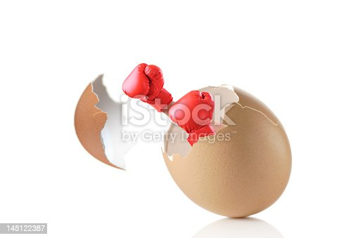 160558362 istock photo Two red boxing gloves breaking out of an egg 145122387