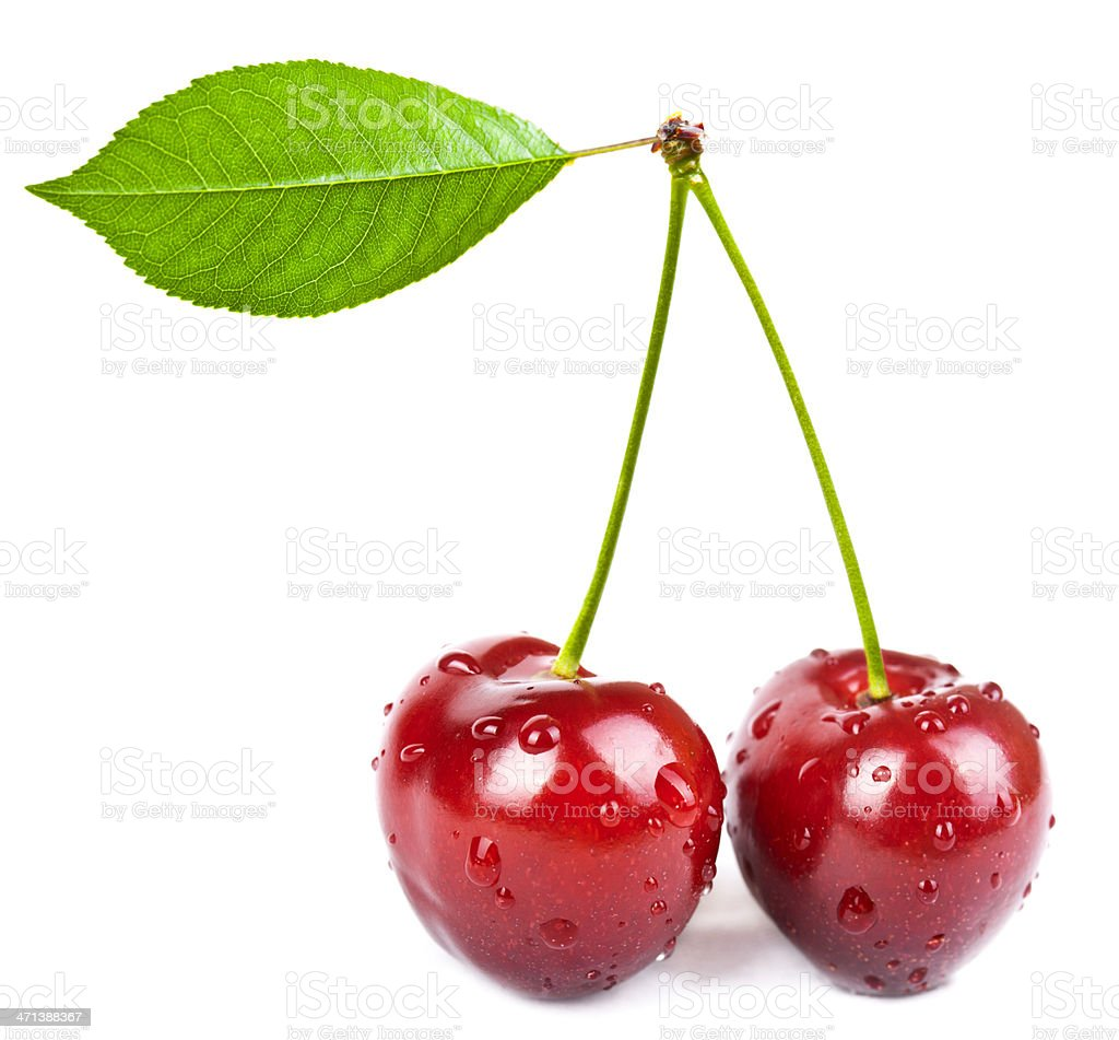 two red cherry with leaf isolated on white background stock photo