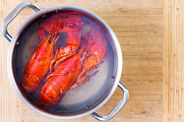 Two red lobsters in a pot of boiling water stock photo